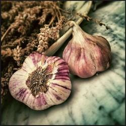 Eat garlic to lower estrogen