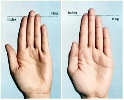 index finger ring finger length is a physical sign of high testosterone