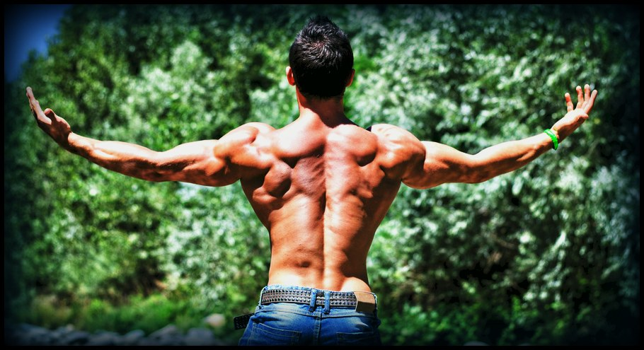 anabolic workout meaning