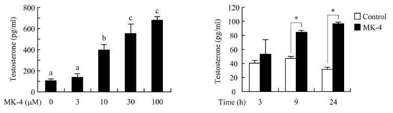 testosteron en vitamine K2