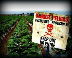 pesticide sign on a farm