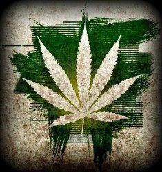 Marijuana and testosterone levels