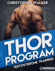 Thor Program created by Christopher Walker
