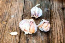 Redwood ingredients review of garlic and vitamin C