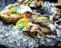 oysters are a food high in zinc