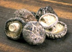 mushrooms are rich in choline