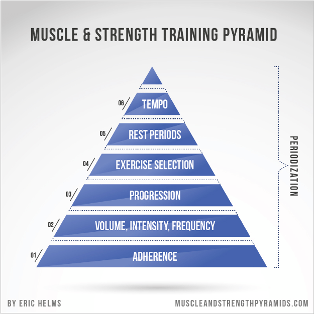 muscle-pyramid