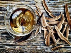 reishi mushroom and tea