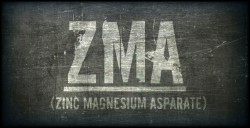zma and testosterone levels