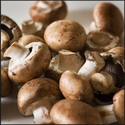 Mushrooms are an aromatase inhibiting food