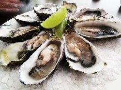 Oysters are a natural aromatase inhibitor