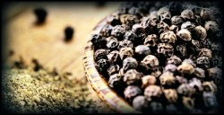 piperine and absorption of supplements
