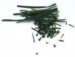 Chives are anti estrogenic