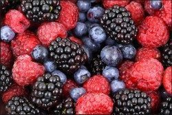 Eat dark berries as part of an anti estrogenic diet