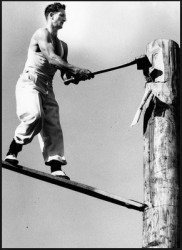 testosterone and wood chopping