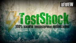 testshock review