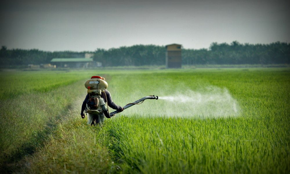 Pesticides and Testosterone: Antiandrogenic Chemicals