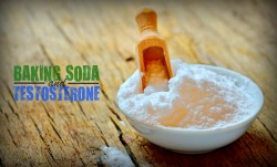sodium bicarbonate and testosterone production