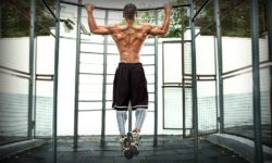 sample testosterone boosting workout