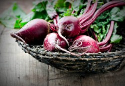 betaine in pre-workout supplements