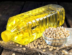 bottle of soyabeans and soy oil on a wooden table