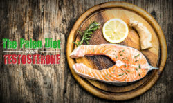 paleo diet and testosterone levels