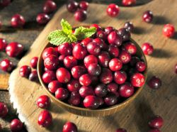 cranberries are a good source of iodine