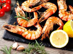 shrimps are high in vitamin e