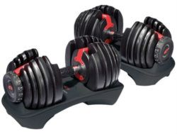 best dumbbells for home gym