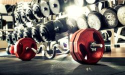 garage gym building guide