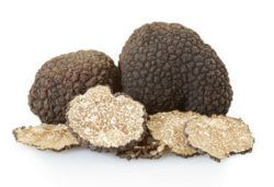 truffles are natural steroids