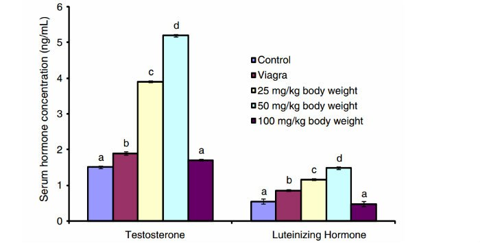 bulbine natalensis testosterone study