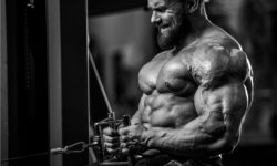 nutrition and workout program for 2018